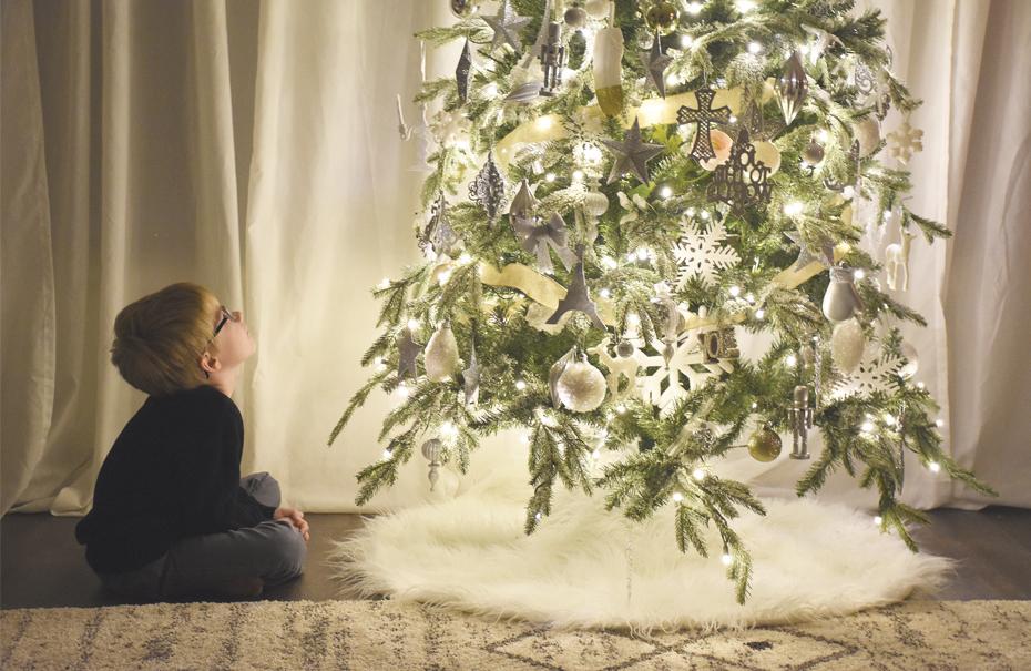 Tree Talk - Canada Lutheran Magazine - ELCIC